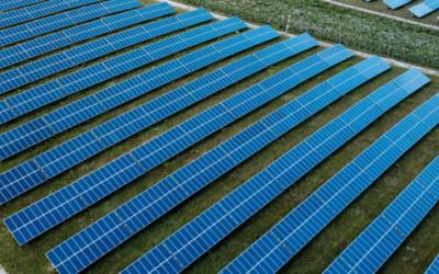 Tenergie acquiert auprès de Marguerite Pantheon six centrales solaires d'une puissance de 72 MW
