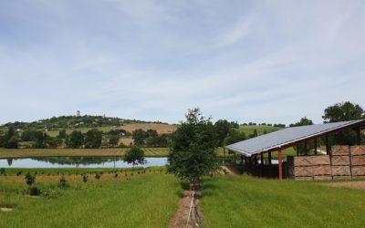 Synergies entre exploitation agricole et production d'énergie propre